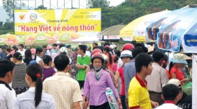 10 doanh nghiệp tham gia đưa hàng Việt về nông thôn