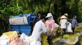Xuất khẩu 2016: Mở rộng thị trường gạo cao cấp