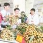 Tìm kiếm hướng đi mới cho sản xuất nhãn lồng ở Hưng Yên
