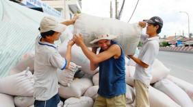 Xuất khẩu gạo: Vừa vui vừa… lo