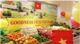 Tuần lễ hàng nông sản Việt Nam tại Dubai