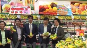 Chuối Việt Nam chinh phục ngoạn mục thị trường Nhật Bản