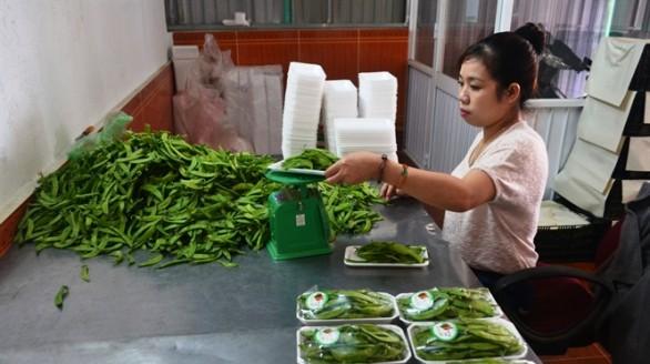 Nông sản Đà Lạt buộc phải gắn nhãn mác