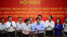 Hợp tác với Lâm Đồng để tìm nguồn rau an toàn cho TP. HCM