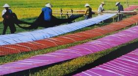 Tự hào hàng Việt Nam (số 10): Lụa Vạn Phúc chuyển mình trước thách thức