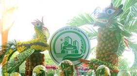 Đặc sắc Ngày hội du lịch sinh thái Phong Điền