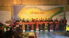 Khai mạc Hội chợ Thời trang Việt Nam - VIFF 2016