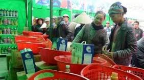 Tăng sức hút của Chương trình đưa hàng Việt về nông thôn