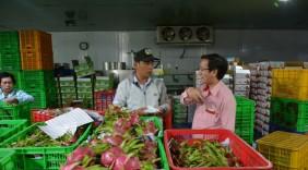 Thanh long Việt bán tại Mỹ giá 180.000 đồng/kg