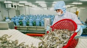 Hàng Việt Nam đón tin vui khi xuất khẩu vào Úc