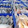 Triển lãm quốc tế chuyên ngành thủy sản tại Cần Thơ