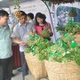 Giao thương tiêu thụ nông sản thực phẩm Hà Nội - Lâm Đồng: Tiếng nói người trong cuộc
