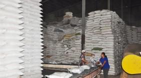 Xuất khẩu gạo tăng, triển vọng mở thị trường mới