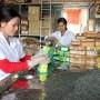 Tăng sức cạnh tranh và giá bán cho chè Việt