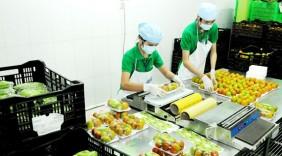 Bắt tay để phát triển hàng Việt