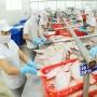 Doanh nghiệp Việt dấn sâu vào thị trường Châu Âu