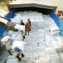 Xuất khẩu gạo- Khởi sắc đầu năm