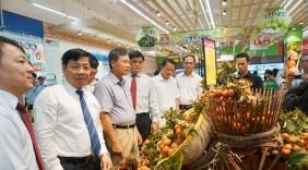 Quảng bá tiêu thụ vải thiều tại TP HCM