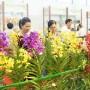 Đà Nẵng tổ chức Triển lãm Nông nghiệp quốc tế lần thứ 18 - Agroviet 2018