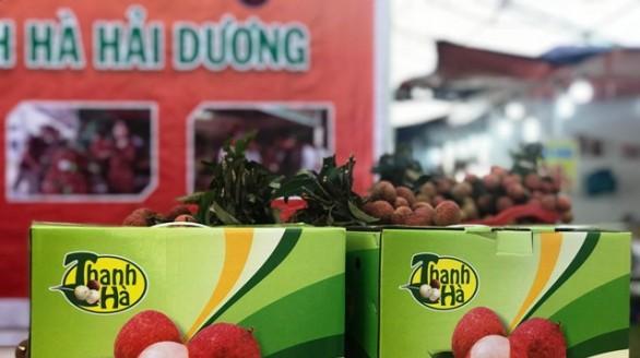 Phát triển thương hiệu vải thiều Thanh Hà