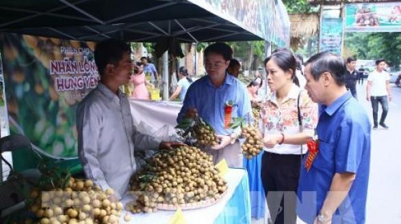 Phiên chợ nhãn lồng Hưng Yên thu hút khách tham quan