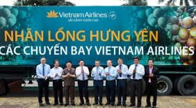 Nhãn lồng Hưng Yên lên các chuyến bay của Vietnam Airlines