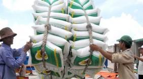 Thúc đẩy doanh nghiệp Việt xuất khẩu hàng hóa qua biên giới Việt - Trung
