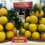 Sắp diễn ra Hội chợ quảng bá cam sành Hà Giang, quýt Bắc Kạn năm 2018 tại Hà Nội