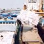 Bộ Nông nghiệp muốn tập trung xuất khẩu gạo thơm, gạo nếp