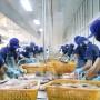 Thủy sản Việt Nam năm 2019: Cần vượt qua nhiều thách thức