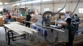 Nâng cao giá trị sản phẩm gỗ của Phú Yên