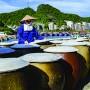 Sản phẩm Việt cần sự đa dạng