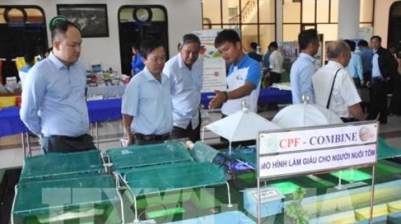 Xây dựng thương hiệu tôm Việt trên thị trường quốc tế