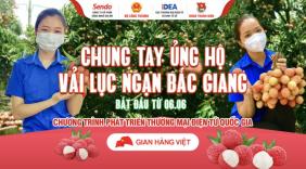 Chung tay đồng lòng của các sàn thương mại điện tử lớn - Đẩy mạnh tiêu thụ trực tuyến vải thiều Bắc Giang