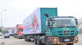Tập trung tháo gỡ khó khăn logistic thương mại điện tử đảm bảo lưu thông hàng hoá khi dịch covid 19 diễn biến phức tạp