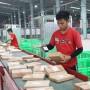 Việt Nam nhiều tiềm năng phát triển e-logistics