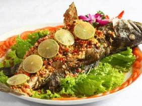 Thưởng thức đặc sản cá mú Phú Yên