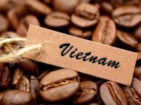 Khách Nhật chuộng gu Chocolate Việt