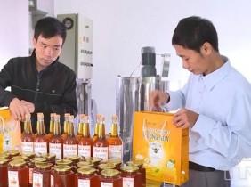 HTX sản xuất mật ong Hưởng Hoa phấn đấu sản phẩm mật ong vươn ra thế giới