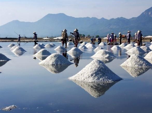 Làng nghề muối Tuyết Diêm