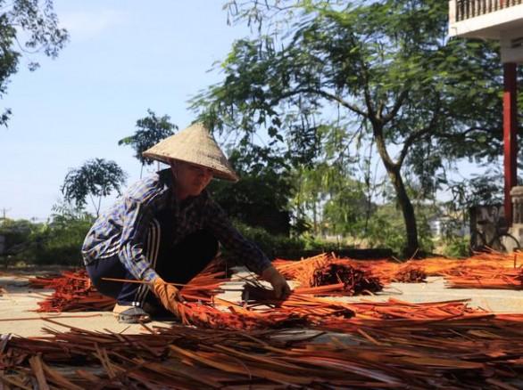 Phơi cỏ khô ở làng nghề đan cỏ tế