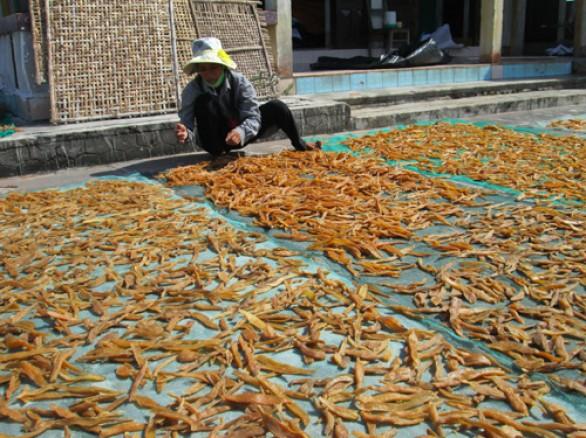 Phơi khoai deo ở Quảng Bình