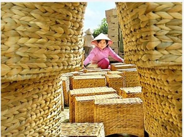 Làng nghề đan lục bình ở Hậu Giang