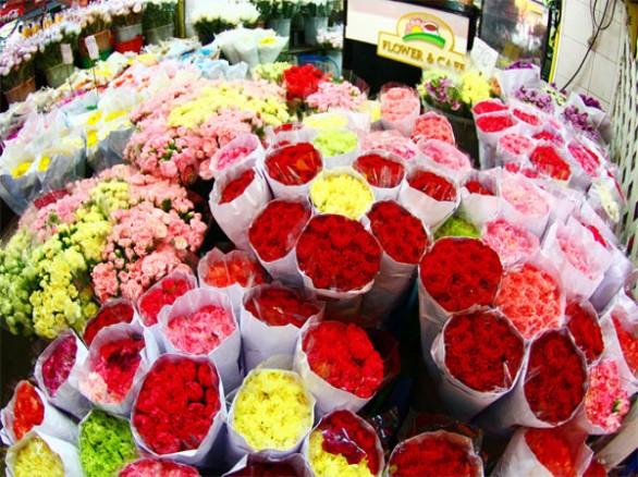 Đà Lạt ngàn sắc hoa