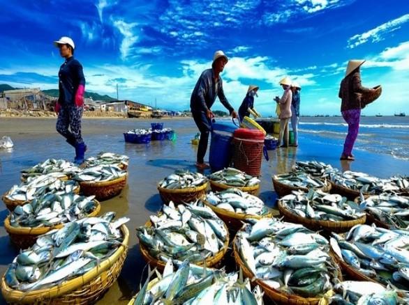Thiên đường hải sản ở Long Hải