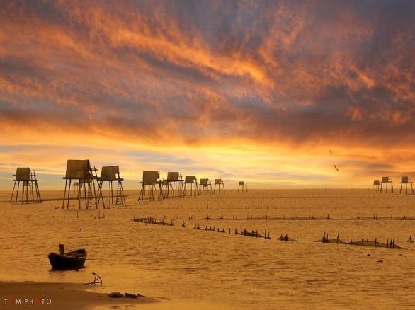 Đến Thái Bình ngắm cồn biển đẹp nhất miền Bắc