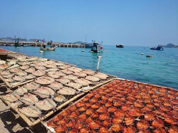 Cảnh phơi Cá Xương Xanh – đặc sản Nam Du