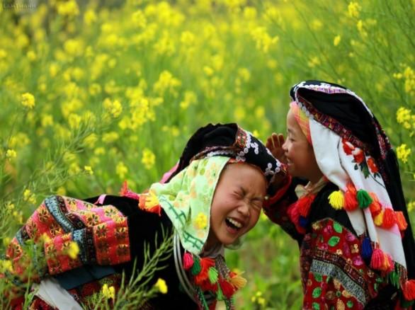 Mùa cải vàng ở Hà Giang