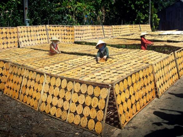 Làng nghề chuối ép ở Cà Mau