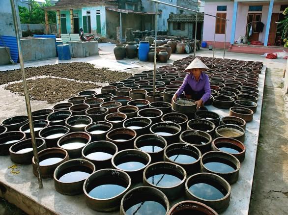 Làng nghề nước mắm Sa Châu - Nam Định